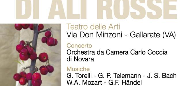 """Concerto """"L'amore di Ali Rosse"""" 16 marzo"""